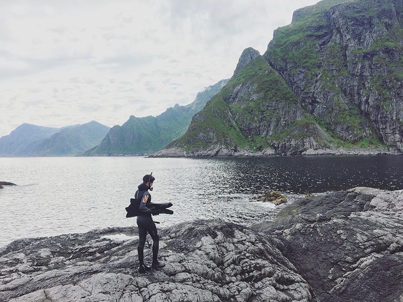 diving a lofoten
